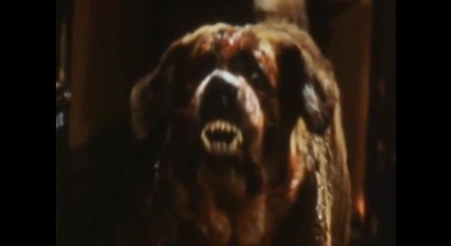 stephen-king-cujo-documentaire