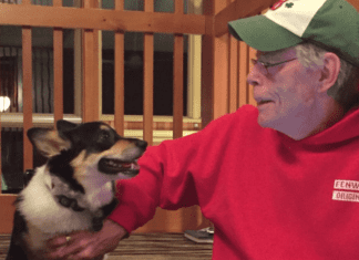 Stephen King et son chien Molly