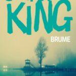 couverture livre de poche brume stephen king