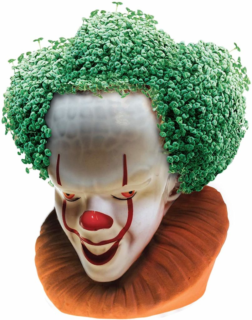 chia-pet-plante-decorative-graines-chia-grippesou-3