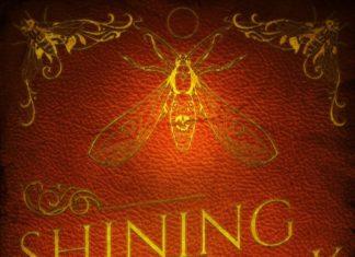shining-in-the-dark-actusf