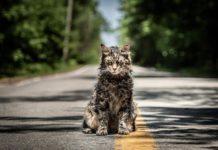 simetierre-pet-sematary-origin-story