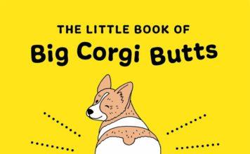 big-corgi-butts-stephen-king-1